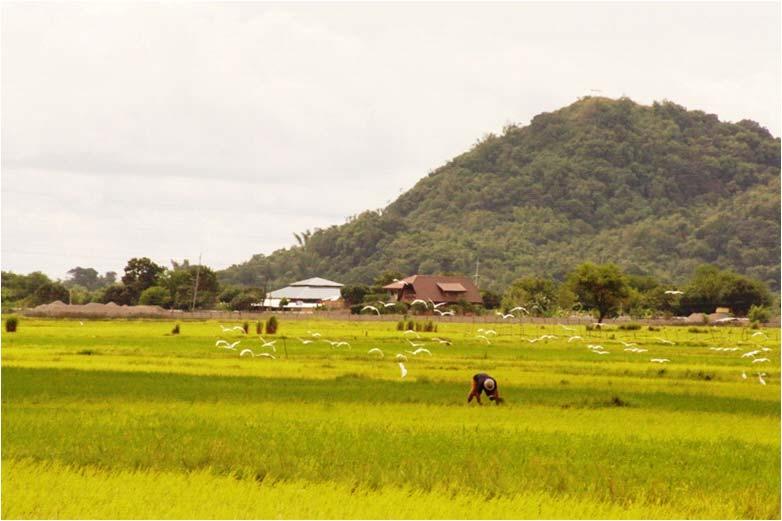 PANAGKAMES