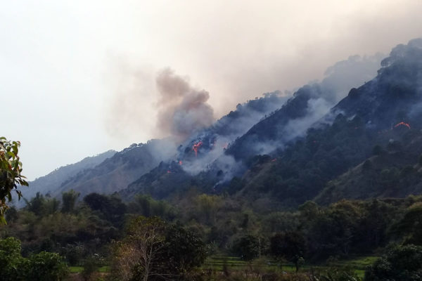 Cervantes forest fire (photo by Bureau of Fire Protection Cervantes)