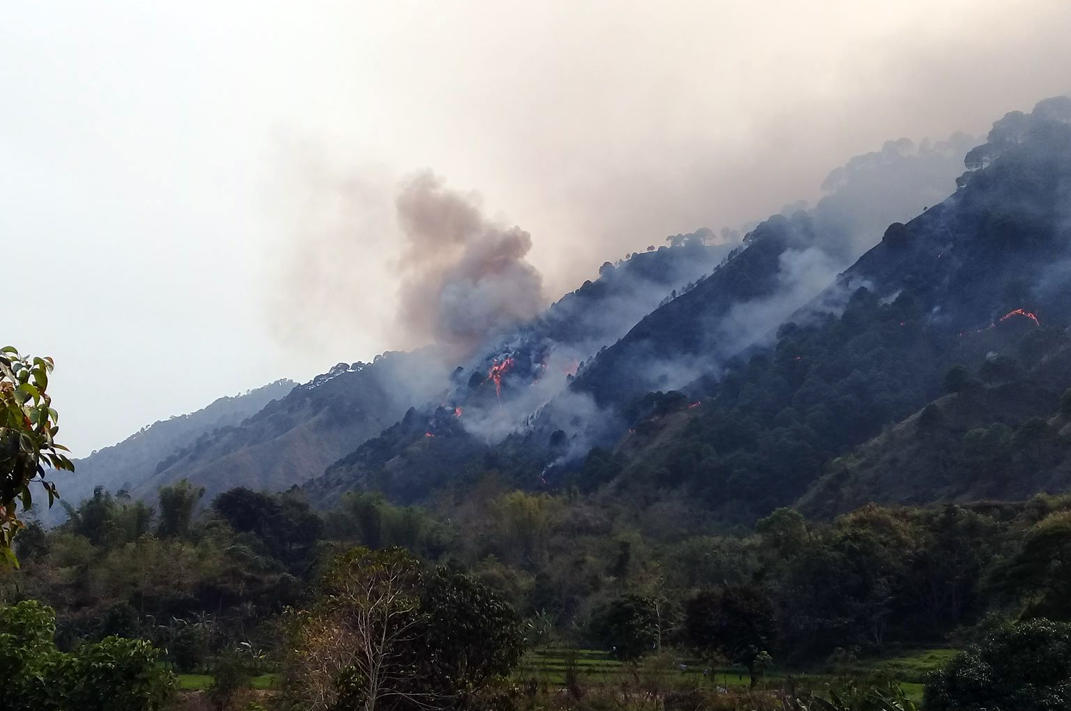 Cervantes forest fire (photo by Bureau of Fire Protection Cervantes)