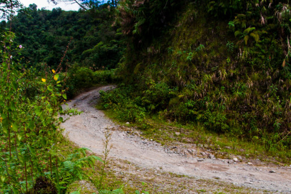 Dirt trail (photo by Jasper Espejo)
