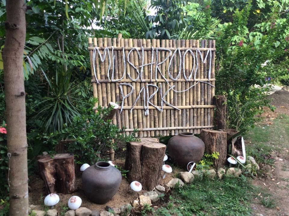 Malakas Farm (photo from Malakas Farm official Facebook Page)